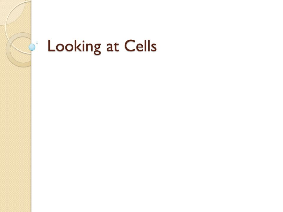 Looking at Cells