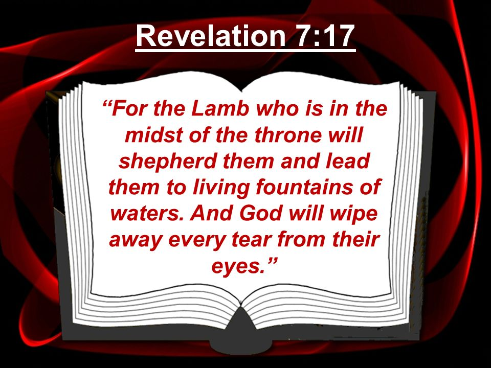 For the Lamb who is in the midst of the throne will shepherd them and lead them to living fountains of waters. And God will wipe away every tear from