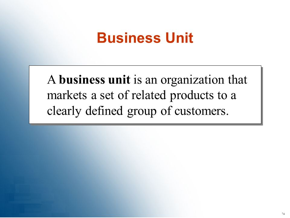74 A business unit is an organization that markets a set of related products to a clearly defined group of customers. Business Unit