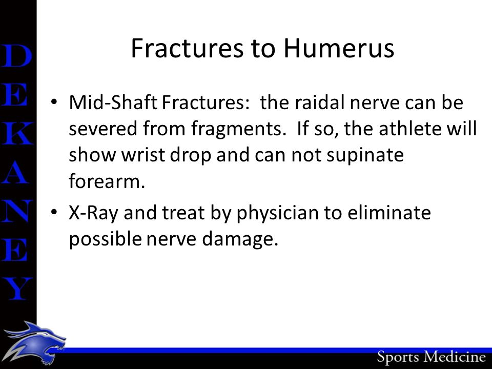 Fractures to Humerus Mid-Shaft Fractures: the raidal nerve can be severed from fragments. If so, the athlete will show wrist drop and can not supinate