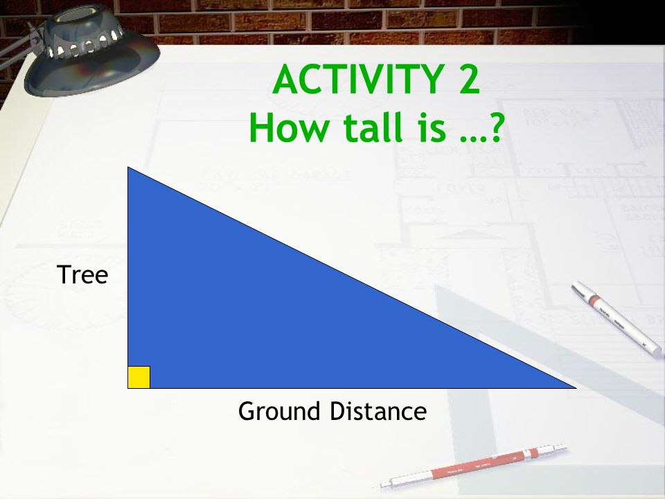 ACTIVITY 2 How tall is …? Tree Ground Distance