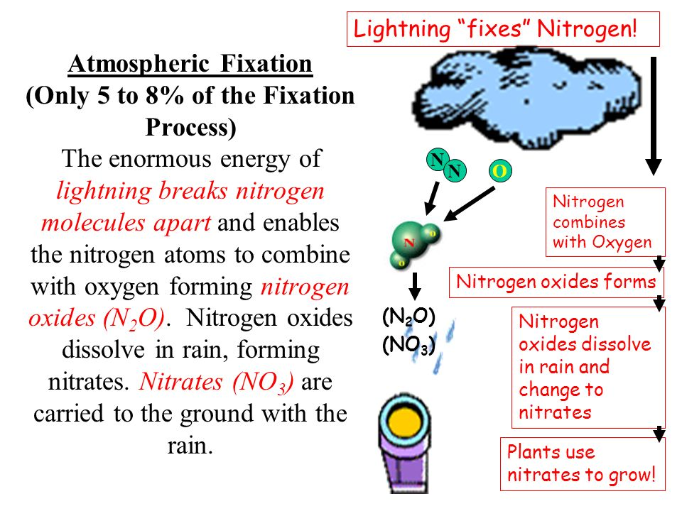 Atmospheric Fixation (Only 5 to 8% of the Fixation Process) The enormous energy of lightning breaks nitrogen molecules apart and enables the nitrogen