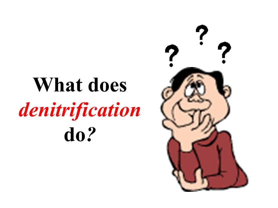 What does denitrification do?