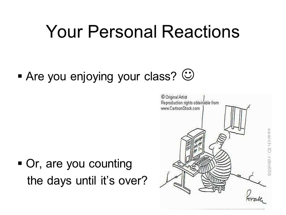 Your Personal Reactions Are you enjoying your class Or, are you counting the days until its over