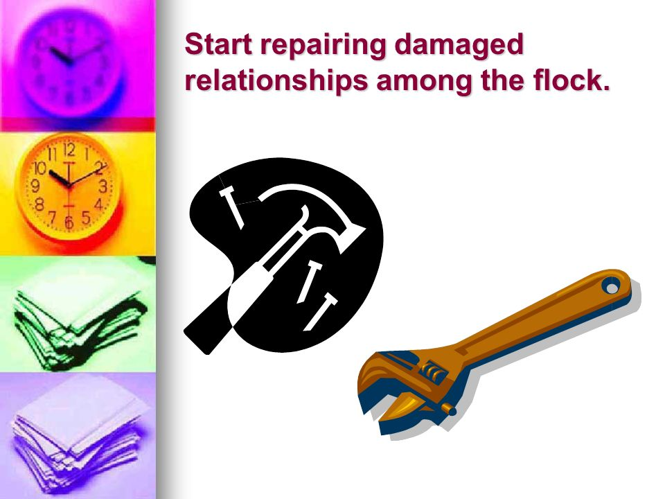 Start repairing damaged relationships among the flock.