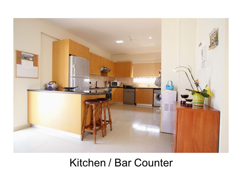 Kitchen / Bar Counter