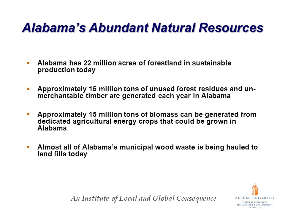 An Institute of Local and Global Consequence Alabamas Abundant Natural Resources Alabama has 22 million acres of forestland in sustainable production today Approximately 15 million tons of unused forest residues and un- merchantable timber are generated each year in Alabama Approximately 15 million tons of biomass can be generated from dedicated agricultural energy crops that could be grown in Alabama Almost all of Alabamas municipal wood waste is being hauled to land fills today