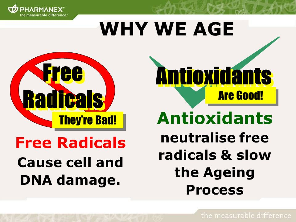 WHY WE AGE Free Radicals Cause cell and DNA damage.