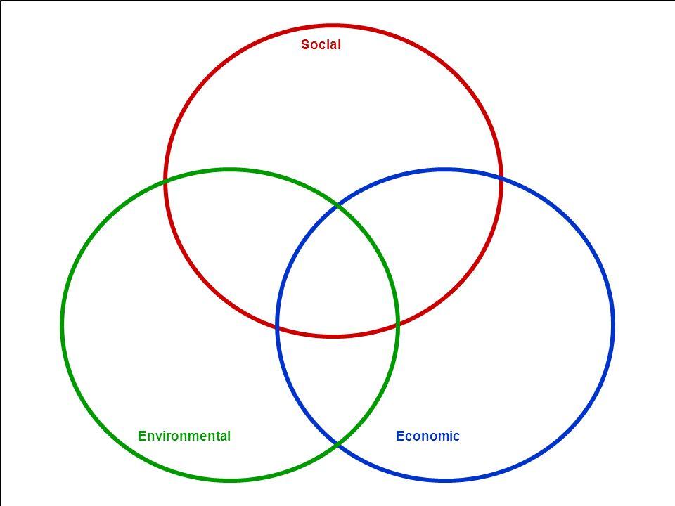 Economic Social Environmental