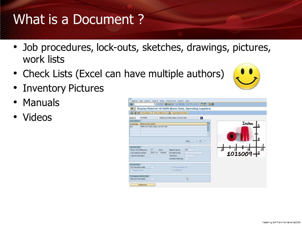 Mastering SAP Plant Maintenance2009 What is a Document ? Job procedures, lock-outs, sketches, drawings, pictures, work lists Check Lists (Excel can ha