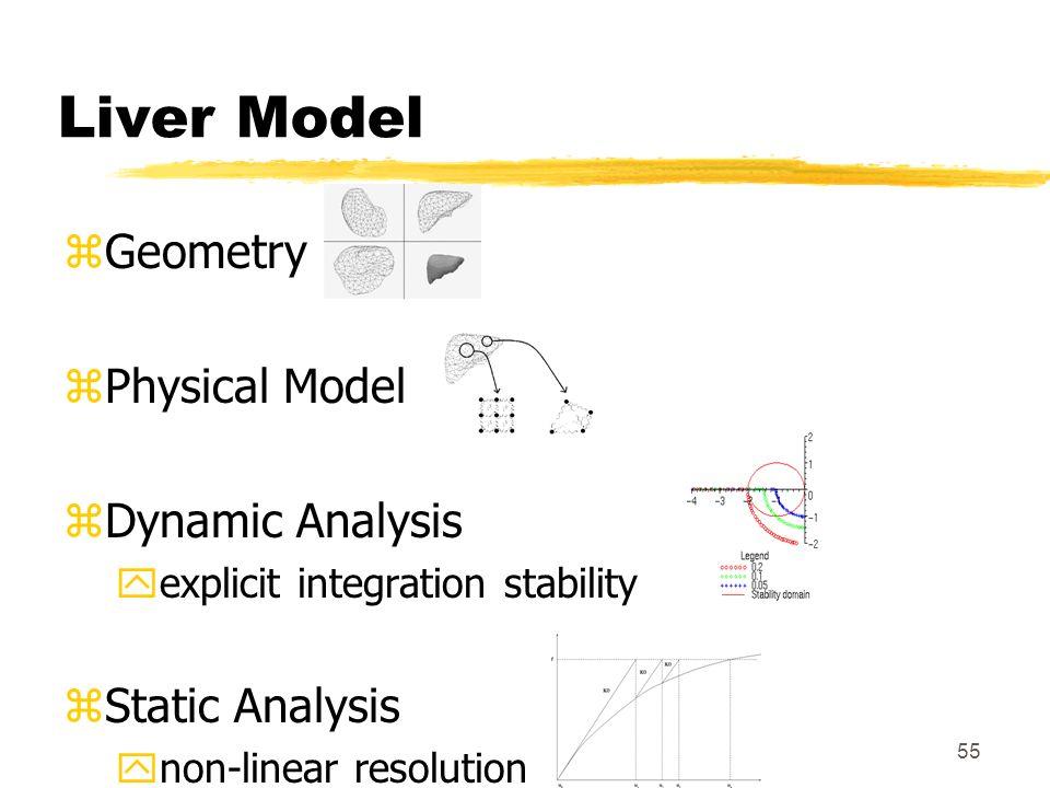55 Liver Model zGeometry zPhysical Model zDynamic Analysis yexplicit integration stability zStatic Analysis ynon-linear resolution