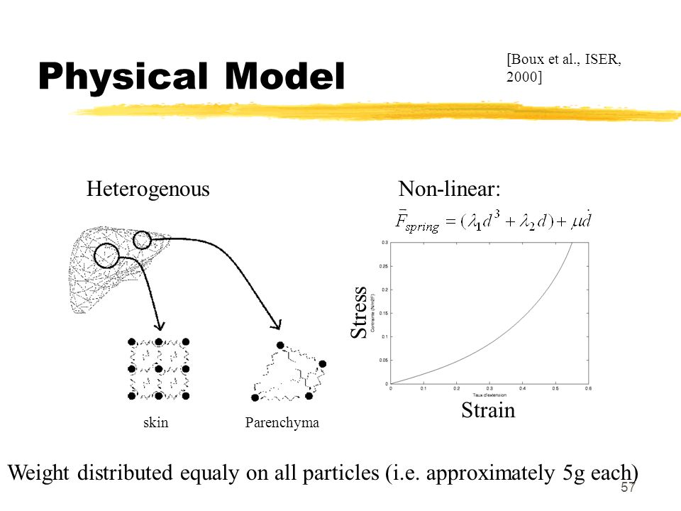 57 Physical Model [Boux et al., ISER, 2000] HeterogenousNon-linear: skinParenchyma Weight distributed equaly on all particles (i.e. approximately 5g e