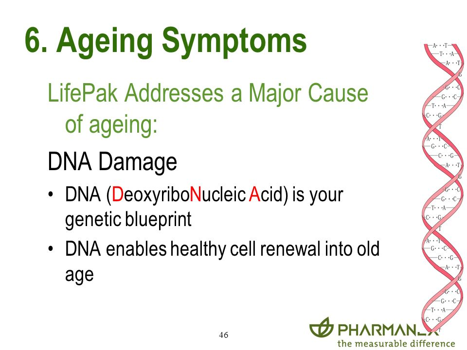 46 LifePak Addresses a Major Cause of ageing: DNA Damage DNA (DeoxyriboNucleic Acid) is your genetic blueprint DNA enables healthy cell renewal into o