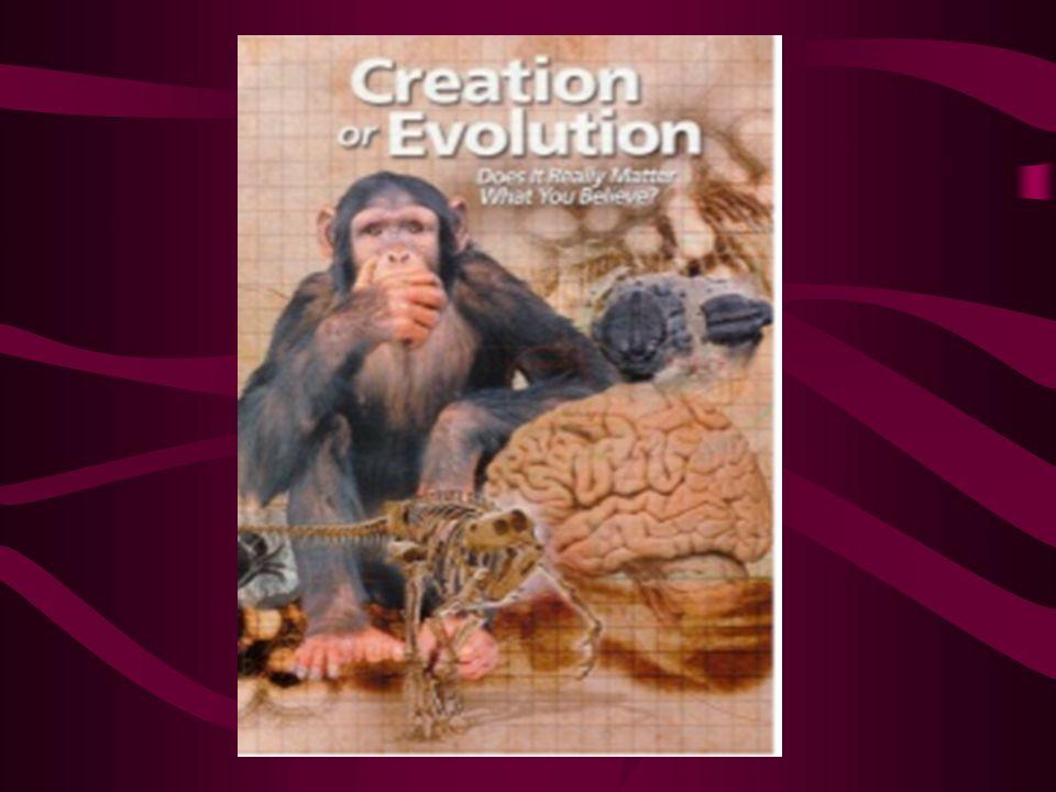 THE MOTIVE BEHIND EVOLUTION
