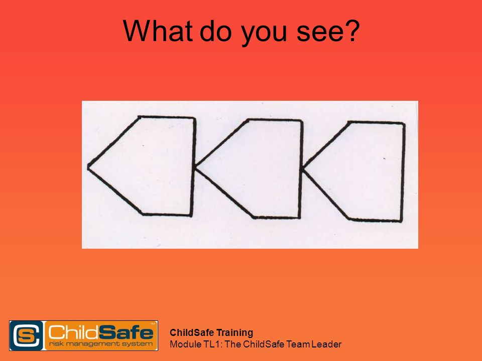 ChildSafe Training Module TL1: The ChildSafe Team Leader What do you see?