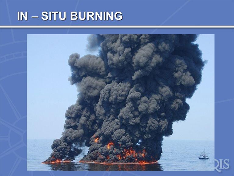 IN SITU BURNING