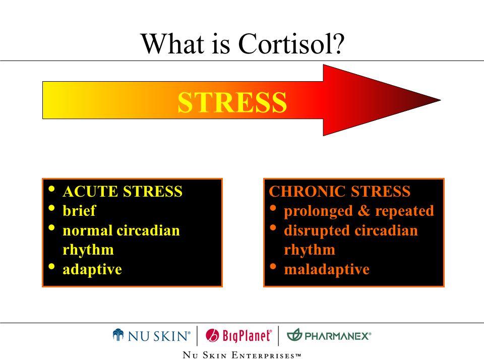 STRESS ACUTE STRESS brief normal circadian rhythm adaptive CHRONIC STRESS prolonged & repeated disrupted circadian rhythm maladaptive What is Cortisol