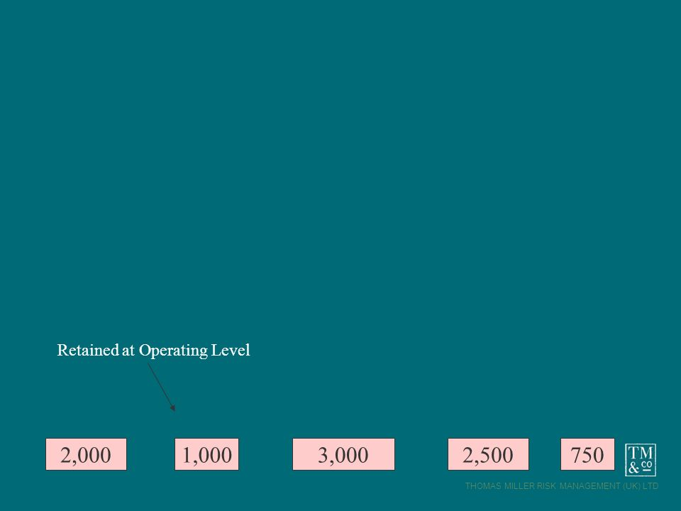 THOMAS MILLER RISK MANAGEMENT (UK) LTD 2,0001,0007502,5003,000 Retained at Operating Level