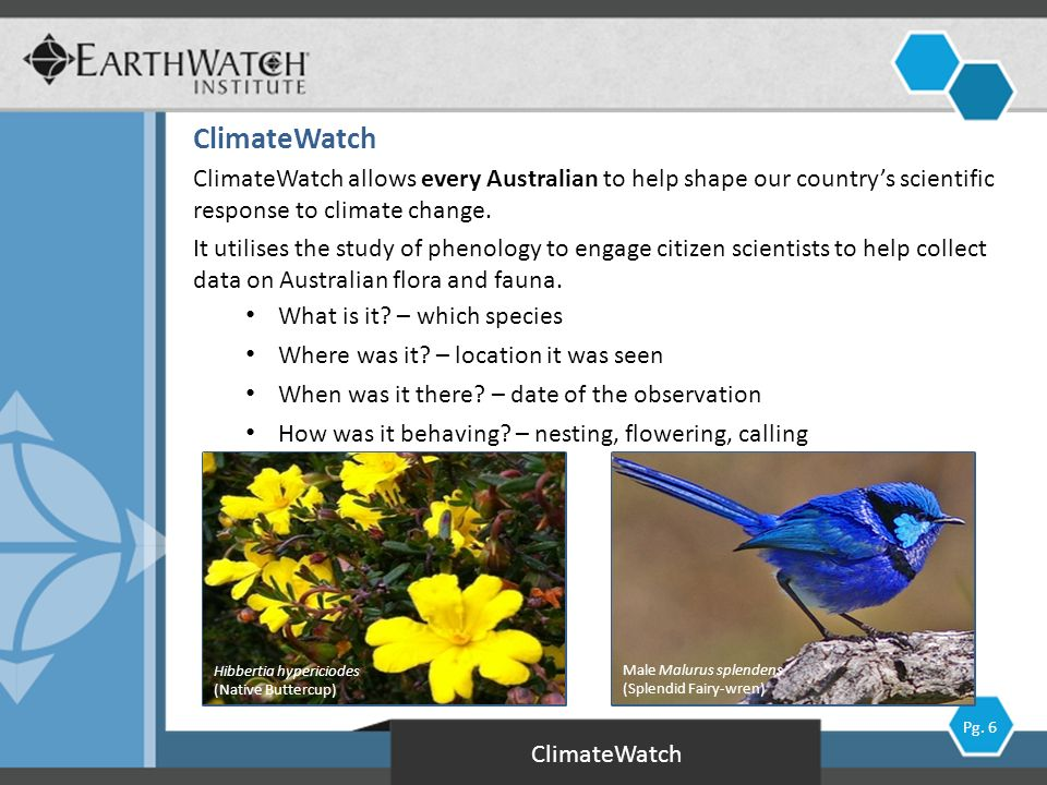*Working Group II (Impacts, Adaptation & Vulnerability) to be released in March 2014 ClimateWatch IPCC 4 th Assessment Report (2007)* Pg.