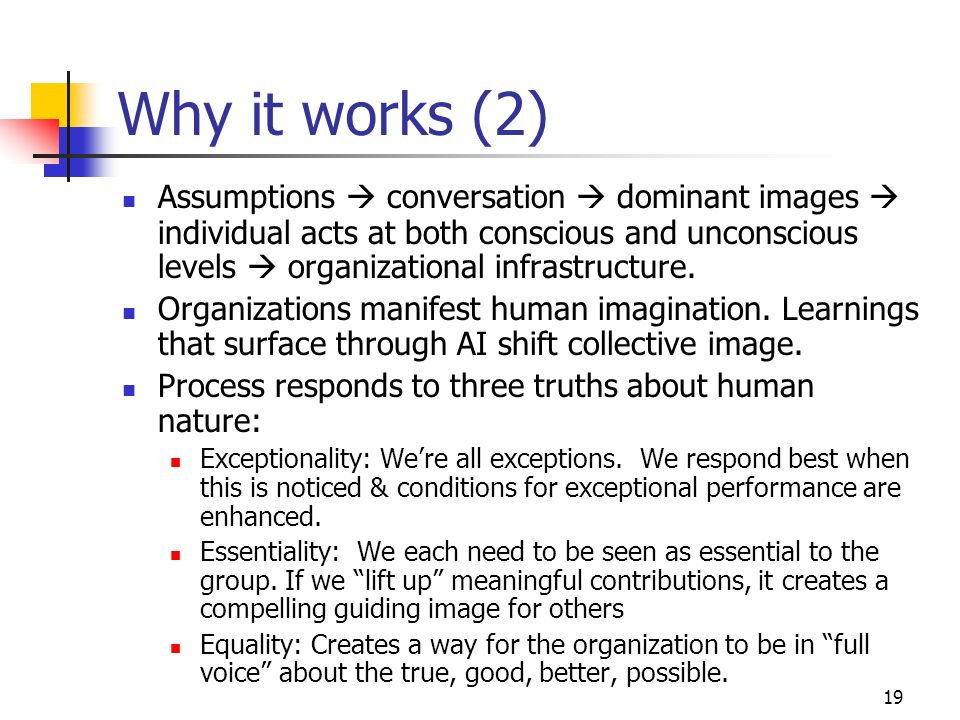 19 Why it works (2) Assumptions conversation dominant images individual acts at both conscious and unconscious levels organizational infrastructure.