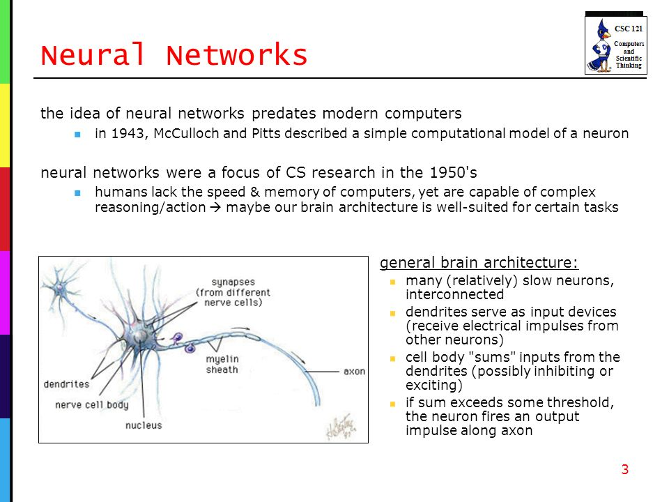 Neural Networks the idea of neural networks predates modern computers in 1943, McCulloch and Pitts described a simple computational model of a neuron neural networks were a focus of CS research in the 1950 s humans lack the speed & memory of computers, yet are capable of complex reasoning/action maybe our brain architecture is well-suited for certain tasks 3 general brain architecture: many (relatively) slow neurons, interconnected dendrites serve as input devices (receive electrical impulses from other neurons) cell body sums inputs from the dendrites (possibly inhibiting or exciting) if sum exceeds some threshold, the neuron fires an output impulse along axon