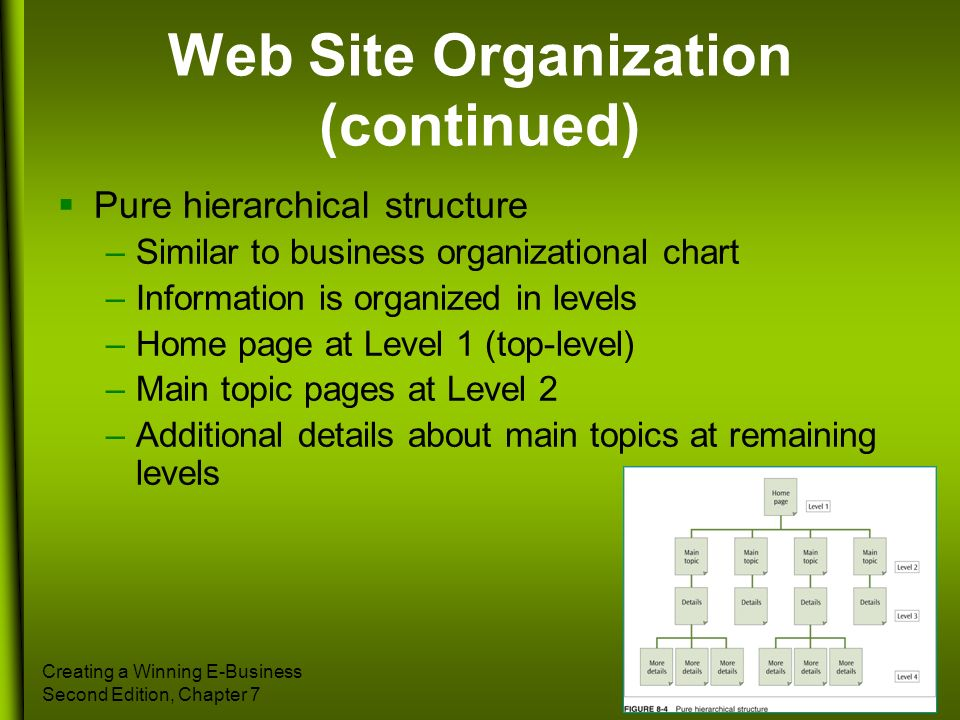 Creating a Winning E-Business Second Edition, Chapter 7 33 Web Site Organization (continued) Pure hierarchical structure –Similar to business organiza
