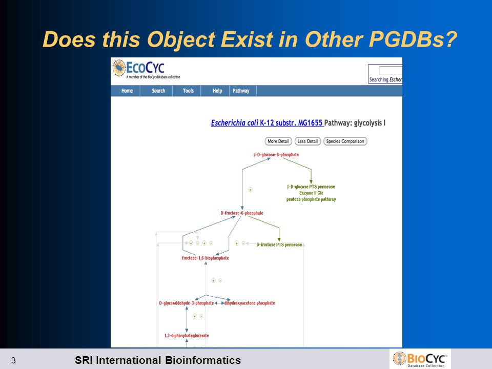 SRI International Bioinformatics 3 Does this Object Exist in Other PGDBs?