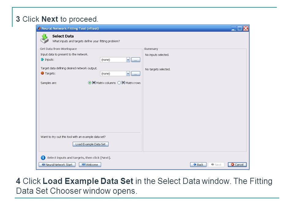 3 Click Next to proceed. 4 Click Load Example Data Set in the Select Data window. The Fitting Data Set Chooser window opens.