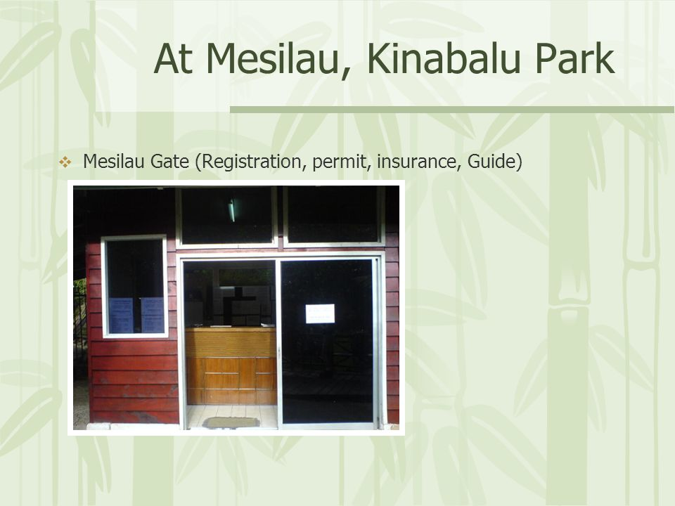 At Mesilau, Kinabalu Park Mesilau Gate (Registration, permit, insurance, Guide)