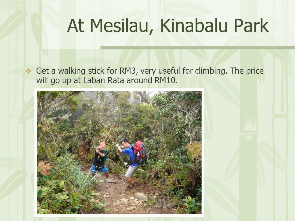 At Mesilau, Kinabalu Park Get a walking stick for RM3, very useful for climbing.