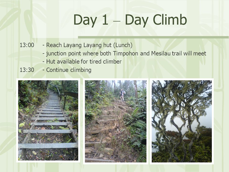 Day 1 – Day Climb 13:00- Reach Layang Layang hut (Lunch) - junction point where both Timpohon and Mesilau trail will meet - Hut available for tired climber 13:30- Continue climbing