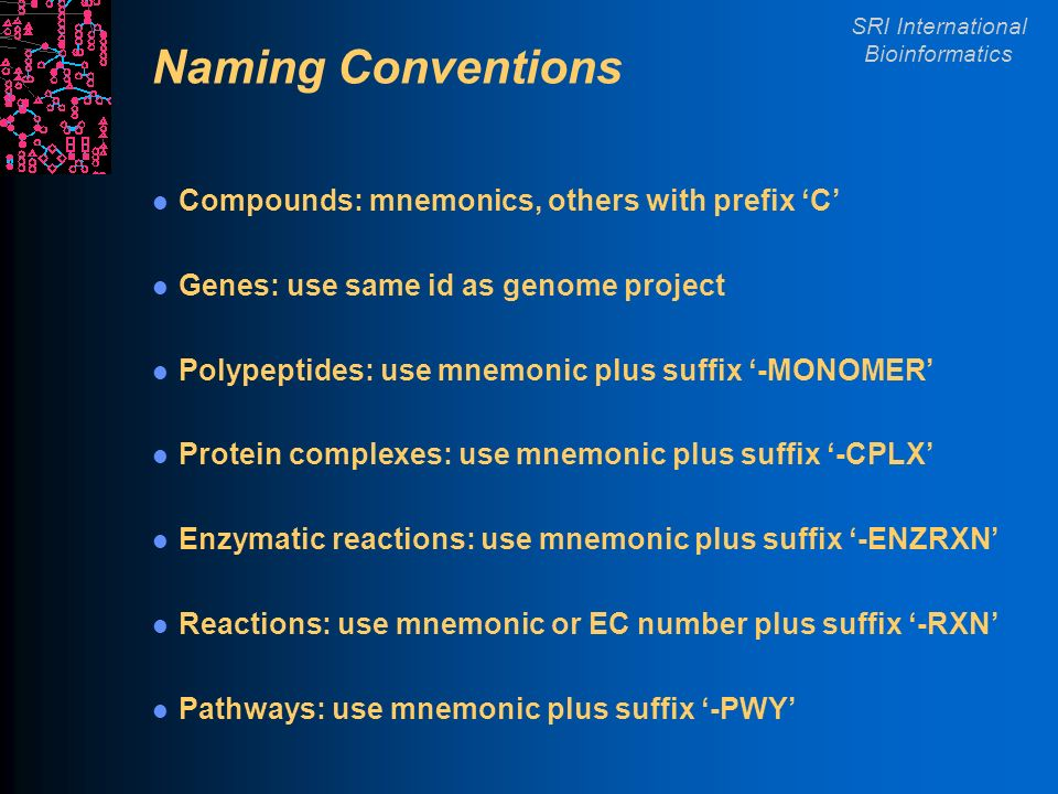 SRI International Bioinformatics Naming Conventions Compounds: mnemonics, others with prefix C Genes: use same id as genome project Polypeptides: use