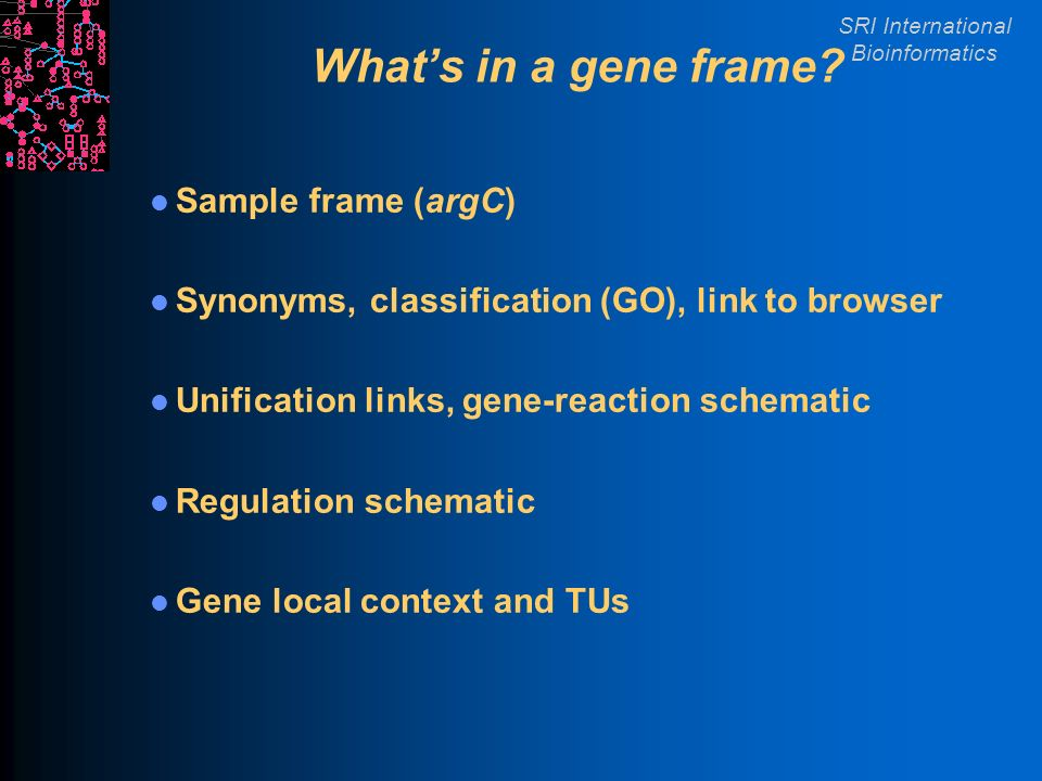 SRI International Bioinformatics Whats in a gene frame.