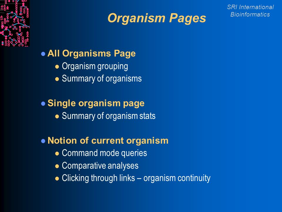SRI International Bioinformatics Organism Pages All Organisms Page l Organism grouping l Summary of organisms Single organism page l Summary of organism stats Notion of current organism l Command mode queries l Comparative analyses l Clicking through links – organism continuity
