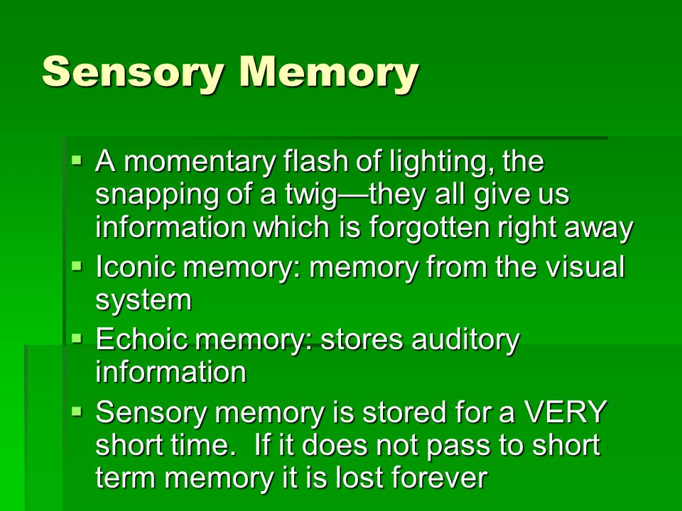 Sensory Memory A momentary flash of lighting, the snapping of a twigthey all give us information which is forgotten right away A momentary flash of li