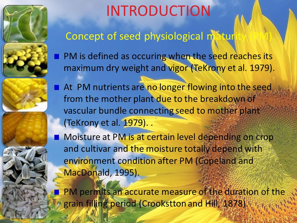 INTRODUCTION Concept of seed physiological maturity (PM) PM is defined as occuring when the seed reaches its maximum dry weight and vigor (TeKrony et