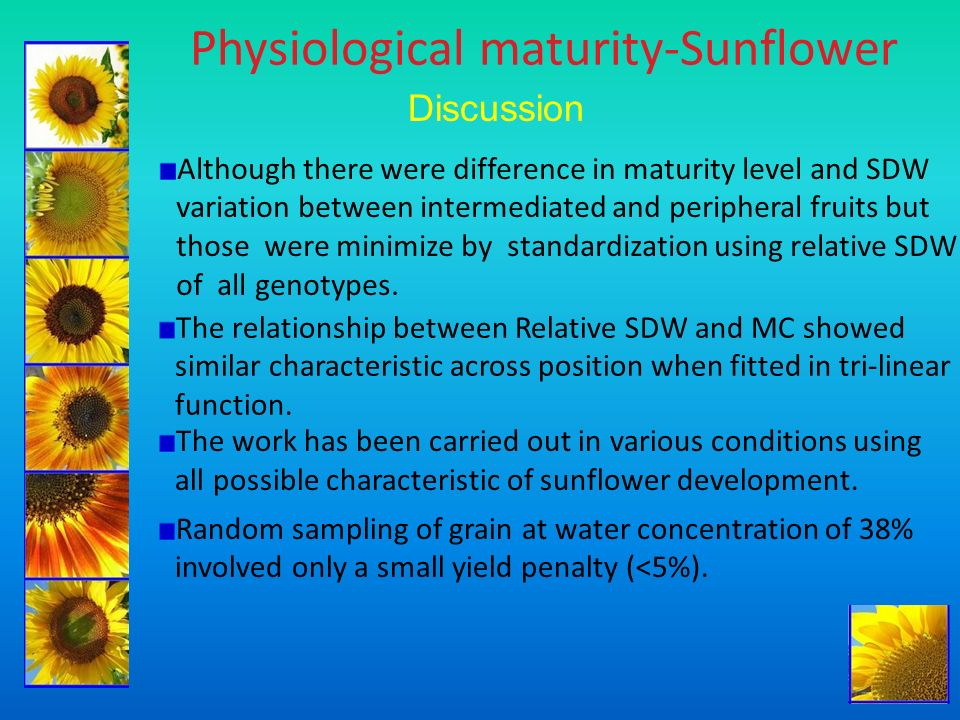 Physiological maturity-Sunflower Discussion Although there were difference in maturity level and SDW variation between intermediated and peripheral fr