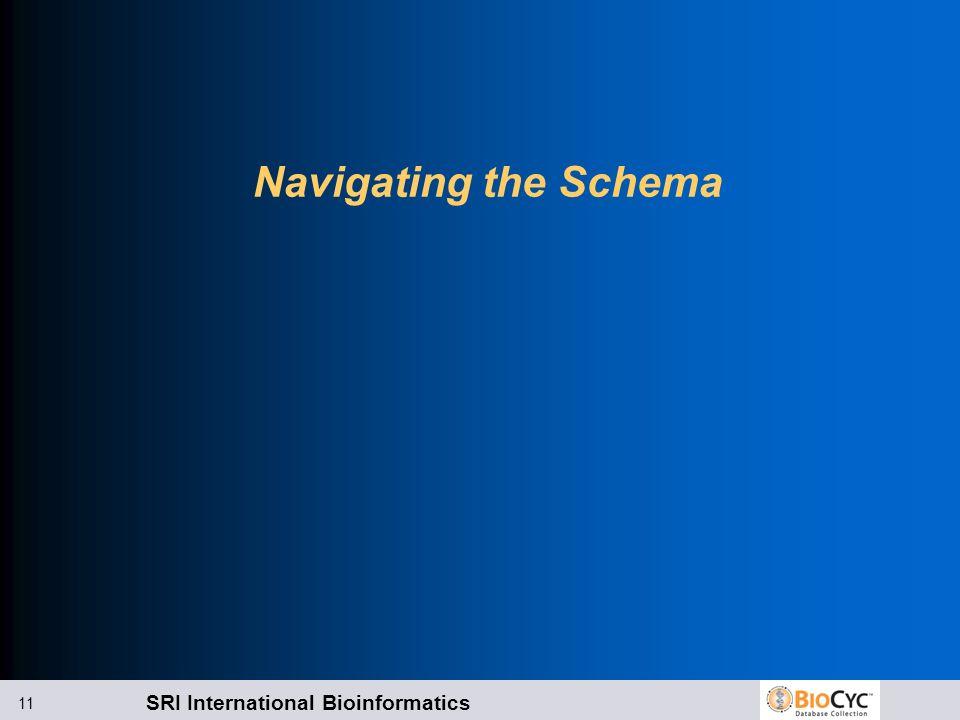 SRI International Bioinformatics 11 Navigating the Schema
