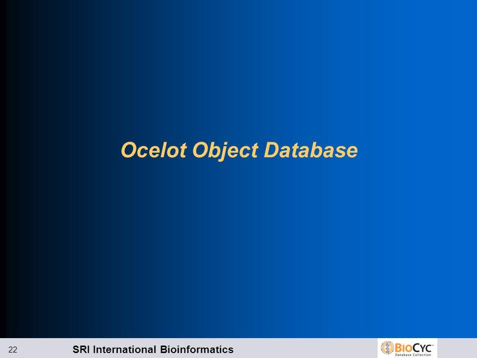 SRI International Bioinformatics 22 Ocelot Object Database