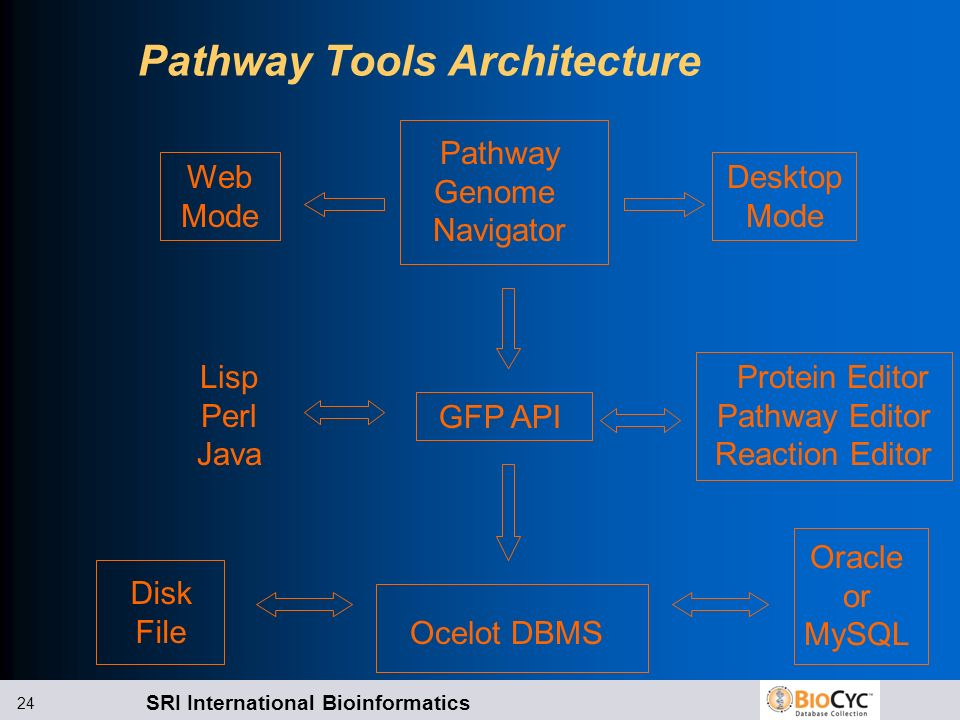 SRI International Bioinformatics 24 Pathway Tools Architecture Ocelot DBMS GFP API Pathway Genome Navigator Web Mode Desktop Mode Protein Editor Pathw