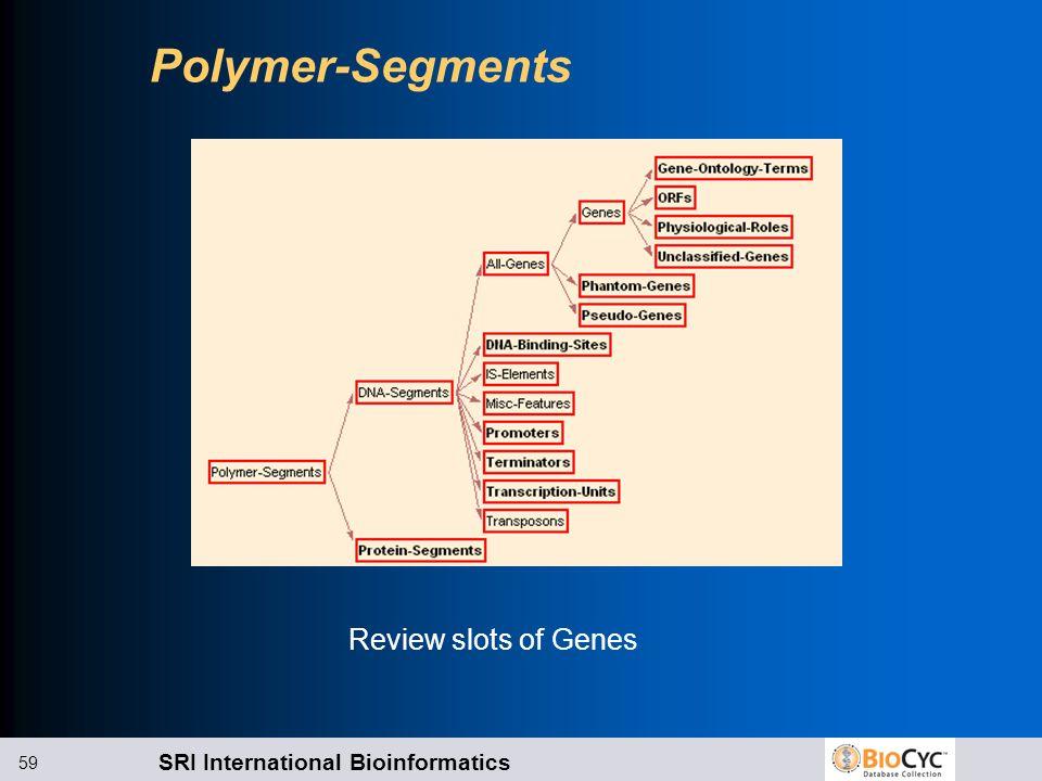 SRI International Bioinformatics 59 Polymer-Segments Review slots of Genes