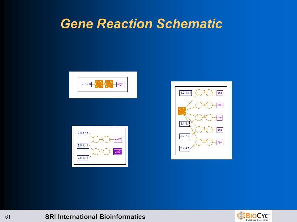 SRI International Bioinformatics 61 Gene Reaction Schematic