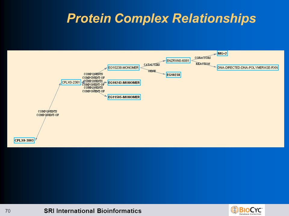 SRI International Bioinformatics 70 Protein Complex Relationships