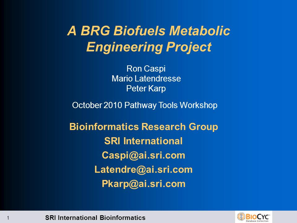 SRI International Bioinformatics 1 A BRG Biofuels Metabolic Engineering Project Bioinformatics Research Group SRI International Caspi@ai.sri.com Latendre@ai.sri.com Pkarp@ai.sri.com Ron Caspi Mario Latendresse Peter Karp October 2010 Pathway Tools Workshop