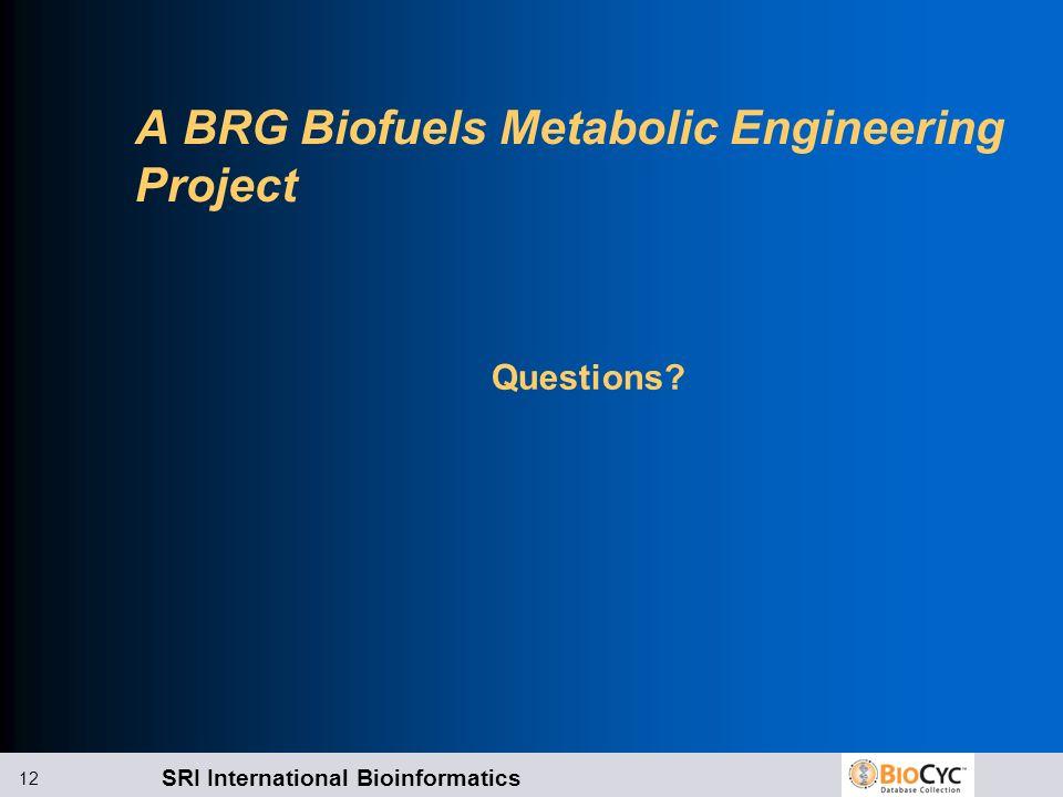 SRI International Bioinformatics 12 A BRG Biofuels Metabolic Engineering Project Questions?
