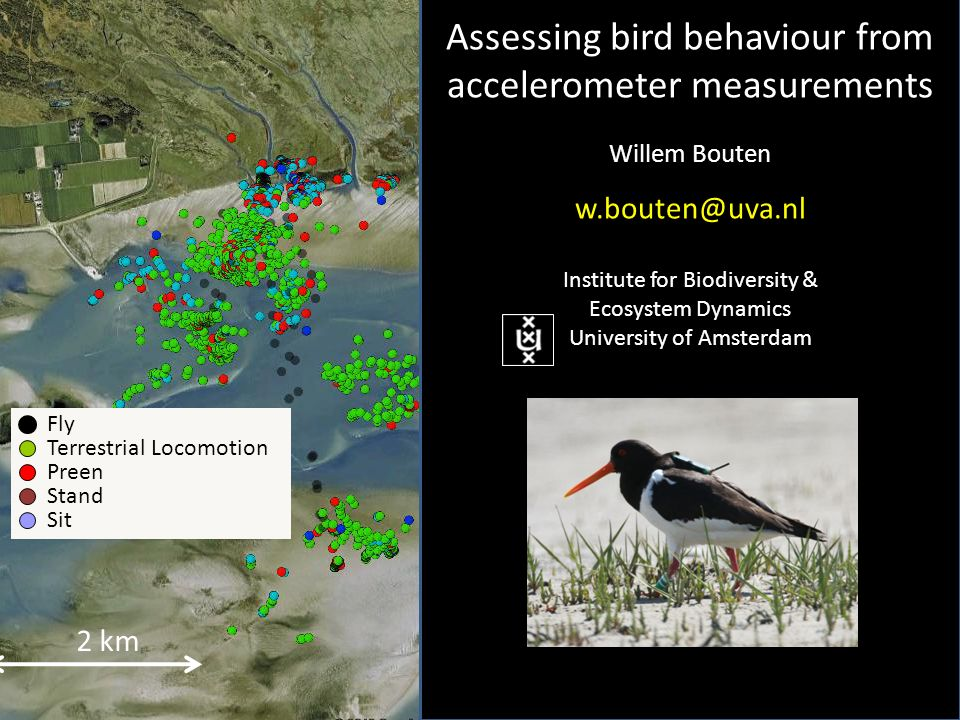 2 km Fly Terrestrial Locomotion Preen Stand Sit Assessing bird behaviour from accelerometer measurements Willem Bouten Institute for Biodiversity & Ecosystem Dynamics University of Amsterdam