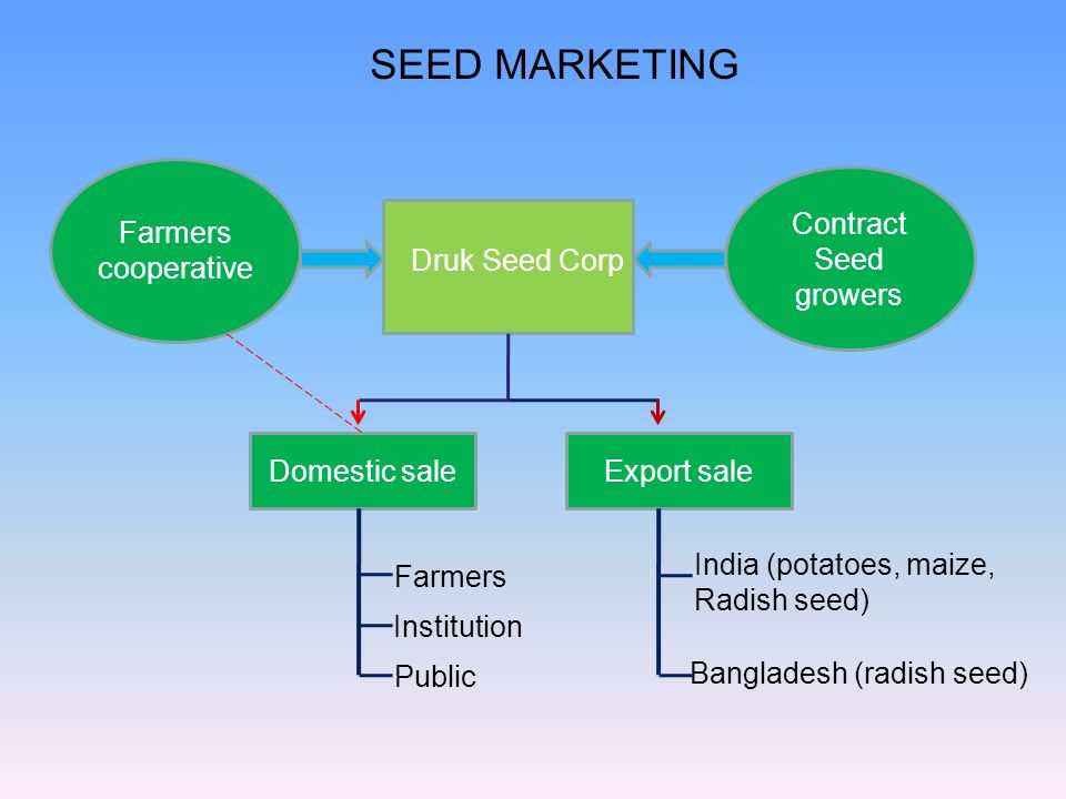 SEED MARKETING Druk Seed Corp Contract Seed growers Farmers cooperative Domestic saleExport sale Farmers Institution Public India (potatoes, maize, Ra