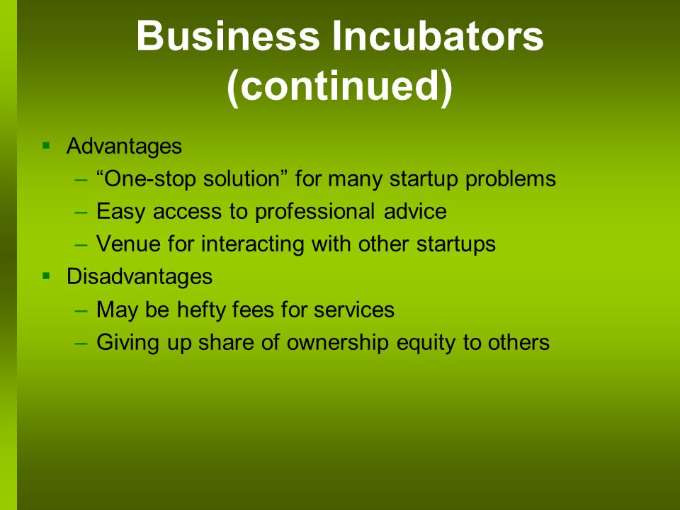 Business Incubators (continued) Advantages –One-stop solution for many startup problems –Easy access to professional advice –Venue for interacting with other startups Disadvantages –May be hefty fees for services –Giving up share of ownership equity to others