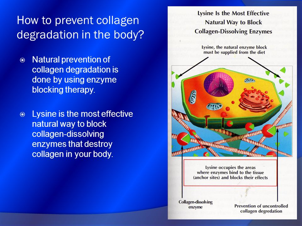 How to prevent collagen degradation in the body? Natural prevention of collagen degradation is done by using enzyme blocking therapy. Lysine is the mo