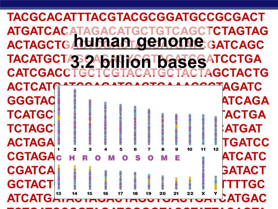 AP Biology A Brave New World